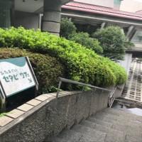 セタビカフェ入り口